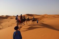 Путешествие к кочевникам